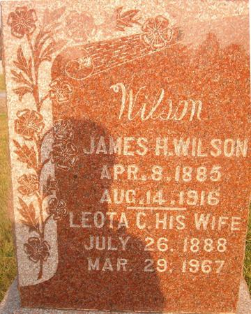 WILSON, JAMES H. - Louisa County, Iowa | JAMES H. WILSON