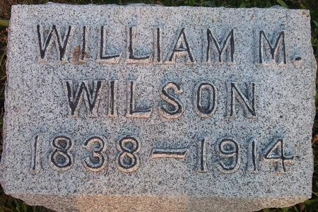 WILSON, WILLIAM M. - Louisa County, Iowa | WILLIAM M. WILSON