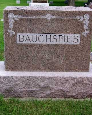 BAUCHSPIES, FAMILY HEADSTONE - Lyon County, Iowa | FAMILY HEADSTONE BAUCHSPIES