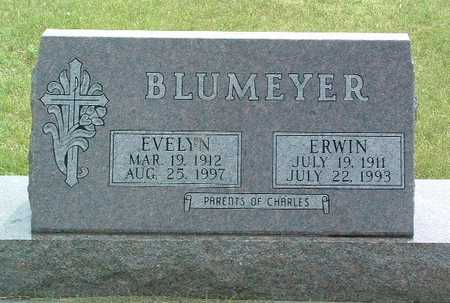 BLUMEYER, ERWIN - Lyon County, Iowa | ERWIN BLUMEYER