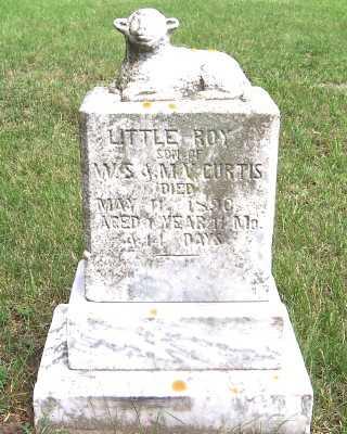 CURTIS, ROY (SON OF W.S.&M.V.) - Lyon County, Iowa   ROY (SON OF W.S.&M.V.) CURTIS