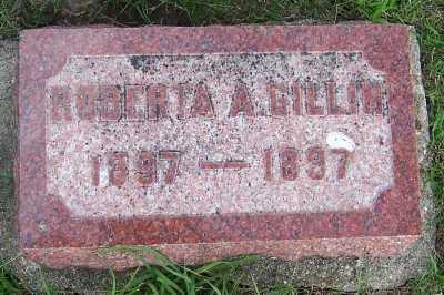 GILLIN, ROBERTA A. (1897-1897) - Lyon County, Iowa | ROBERTA A. (1897-1897) GILLIN