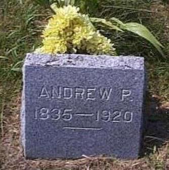 JOHNSON, ANDREW P. - Lyon County, Iowa | ANDREW P. JOHNSON