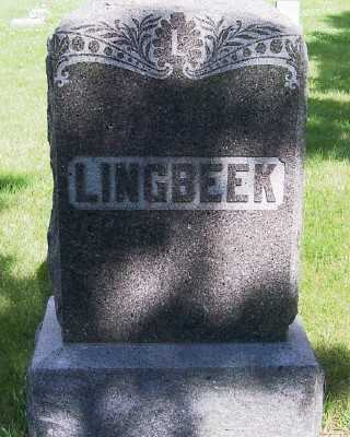 LINGBEEK, FAMILY HEADSTONE - Lyon County, Iowa | FAMILY HEADSTONE LINGBEEK
