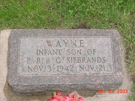 SIEBRANDS, WAYNE - Lyon County, Iowa   WAYNE SIEBRANDS