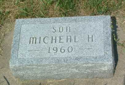 VAN BRIESEN, MICHEAL H. - Lyon County, Iowa   MICHEAL H. VAN BRIESEN