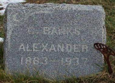 ALEXANDER, GEORGE BANKS - Madison County, Iowa | GEORGE BANKS ALEXANDER