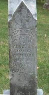 ALLCOCK, EFFIE IRENE - Madison County, Iowa | EFFIE IRENE ALLCOCK