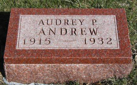 ANDREW, AUDREY PRINCELLE - Madison County, Iowa | AUDREY PRINCELLE ANDREW