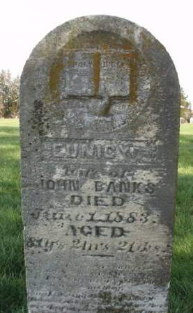 JAMES BANKS, EUNICE - Madison County, Iowa | EUNICE JAMES BANKS