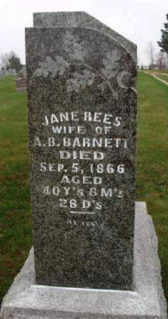 REES BARNETT, JANE - Madison County, Iowa | JANE REES BARNETT