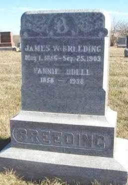 ODELL BREEDING, FANNIE ANN - Madison County, Iowa | FANNIE ANN ODELL BREEDING