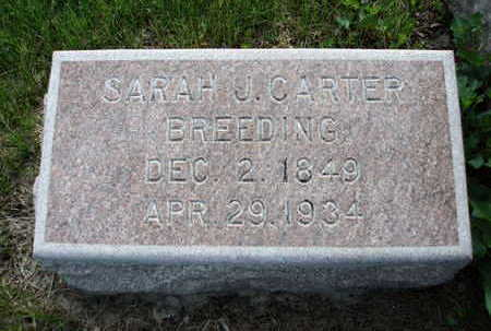 CARTER BREEDING, LOUSARA / SARAH J. - Madison County, Iowa | LOUSARA / SARAH J. CARTER BREEDING