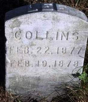 COLLINS, LEE - Madison County, Iowa | LEE COLLINS