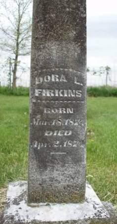 FIRKINS, DORA LOUISE - Madison County, Iowa | DORA LOUISE FIRKINS