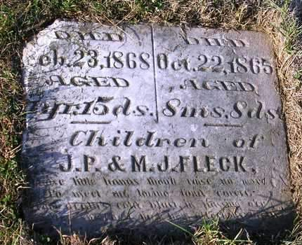 FLECK, WILLIAM T. - Madison County, Iowa | WILLIAM T. FLECK