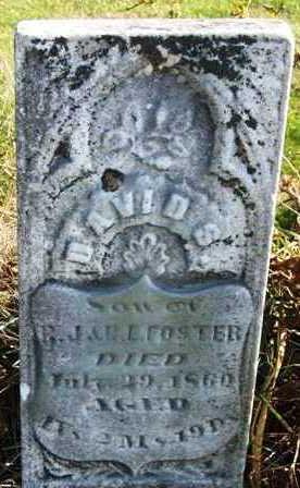FOSTER, DAVID B. - Madison County, Iowa | DAVID B. FOSTER