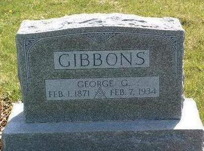 GIBBONS, GEORGE GAYLORD - Madison County, Iowa   GEORGE GAYLORD GIBBONS