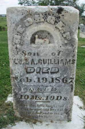 GUILLIAMS, GEORGE P. - Madison County, Iowa   GEORGE P. GUILLIAMS