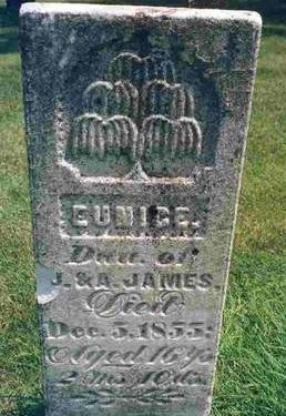 JAMES, EUNICE - Madison County, Iowa | EUNICE JAMES