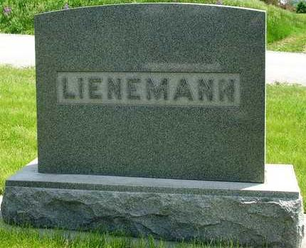 LIENEMANN, FAMILY HEADSTONE - Madison County, Iowa | FAMILY HEADSTONE LIENEMANN