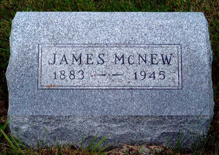 MCNEW, JAMES - Madison County, Iowa | JAMES MCNEW