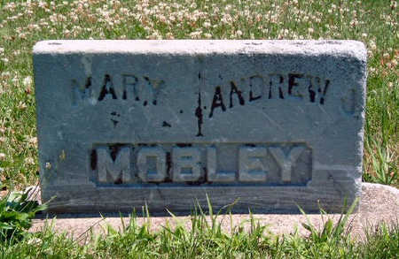 TEAGUE MOBLEY, MARY POLLY - Madison County, Iowa | MARY POLLY TEAGUE MOBLEY