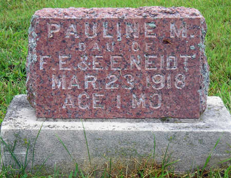 NEIDT, PAULINE MARIE - Madison County, Iowa | PAULINE MARIE NEIDT