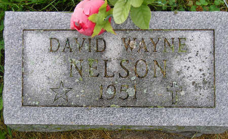 NELSON, DAVID WAYNE - Madison County, Iowa | DAVID WAYNE NELSON