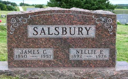 BROCK SALSBURY, NELLIE E. - Madison County, Iowa | NELLIE E. BROCK SALSBURY