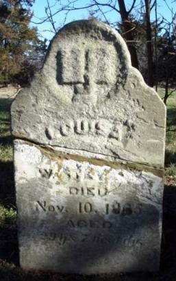 STEVENS, LOUISA S. - Madison County, Iowa   LOUISA S. STEVENS