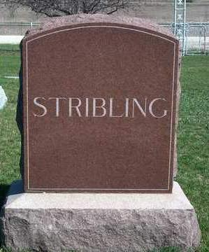 STRIBLING, FAMILY STONE - Madison County, Iowa | FAMILY STONE STRIBLING