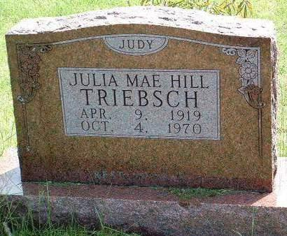 HILL TRIEBSCH, JULIA MAE (JUDY) - Madison County, Iowa | JULIA MAE (JUDY) HILL TRIEBSCH