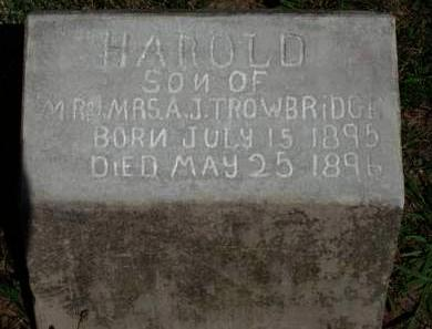 TROWBRIDGE, HAROLD - Madison County, Iowa | HAROLD TROWBRIDGE