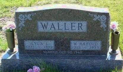 WALLER, LYLA ILENE - Madison County, Iowa | LYLA ILENE WALLER