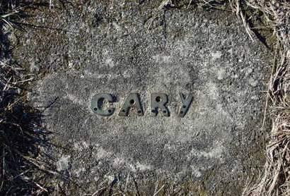 WAUGH, CARY GILBERT - Madison County, Iowa   CARY GILBERT WAUGH