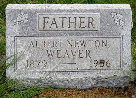 WEAVER, ALBERT NEWTON - Madison County, Iowa | ALBERT NEWTON WEAVER