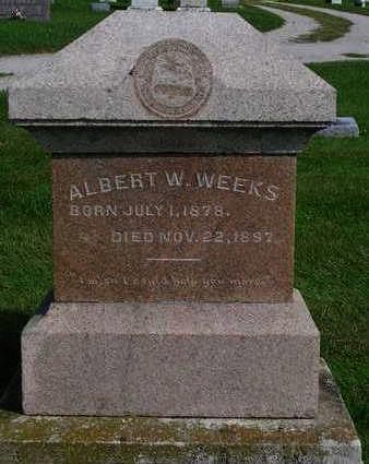 WEEKS, ALBERT WILLIAM CAMPBELL - Madison County, Iowa | ALBERT WILLIAM CAMPBELL WEEKS