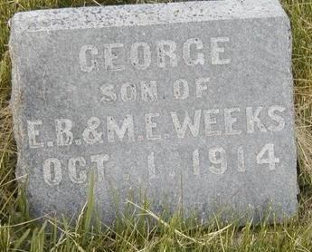 WEEKS, GEORGE - Madison County, Iowa | GEORGE WEEKS