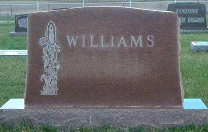 WILLIAMS, FAMILY STONE - Madison County, Iowa | FAMILY STONE WILLIAMS