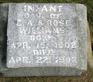 WILLIAMS, INFANT - Madison County, Iowa | INFANT WILLIAMS