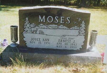 MOSES, ERNEST JOHN - Mahaska County, Iowa | ERNEST JOHN MOSES