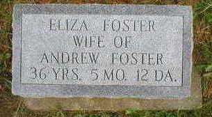 FOSTER, ELIZA - Marion County, Iowa | ELIZA FOSTER