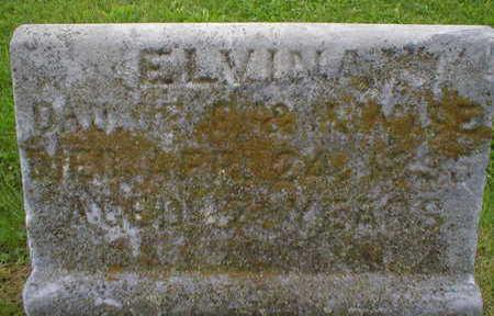 WISE, ELVINA - Marion County, Iowa   ELVINA WISE
