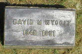 WYCOFF, DAVID M. - Marion County, Iowa | DAVID M. WYCOFF