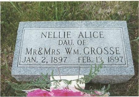 GROSSE, NELLIE ALICE - Mills County, Iowa | NELLIE ALICE GROSSE
