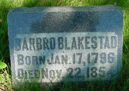BLAKESTAD, BARBRO - Mitchell County, Iowa | BARBRO BLAKESTAD