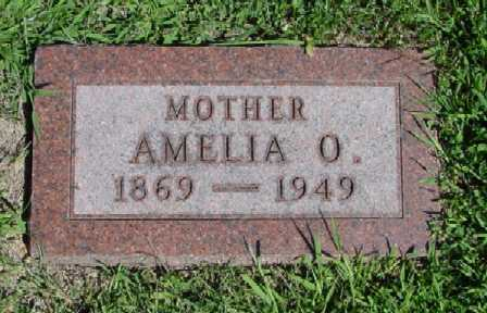 KITTLESON, AMELIA O. - Mitchell County, Iowa | AMELIA O. KITTLESON
