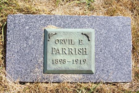 PARRISH, ORVIL E. - Mitchell County, Iowa | ORVIL E. PARRISH