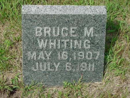 WHITING, BRUCE M. - Monona County, Iowa | BRUCE M. WHITING